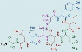Oxytocin شیمی عشق