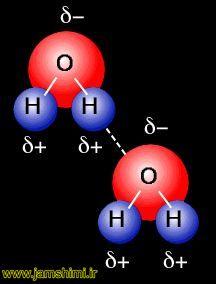 انیمیشن پیوند هیدروژنی بین مولکول های آب