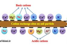 دانلود جدول و لیست کاتیون و آنیون های تک و چند اتمی شیمی فارسی