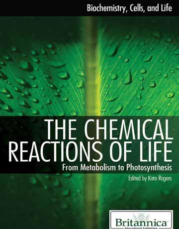دانلود کتاب واکنش های شیمیایی زندگی: از متابولیسم تا فوتوسنتز