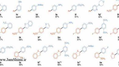 Photo of مقاله شیمی کوپلینگ متقاطع اکسایشی نوکلئوفیل های بور و آنتیموان از طریق پالادیم (I)