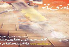 Photo of دانلود ماهنامه فناوری نانو شماره 256 بهمن ماه 97
