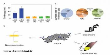 Creation of Conductive Graphene Materials by Bacterial Reduction