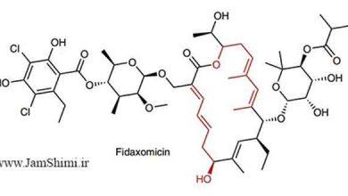 Photo of سنتز موتیف های پلی کتید از طریق واکنش چندجزئی کاتالیز شده بر پایه روتنیم