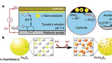 Photo of تولید الکتروشیمیایی نیتریک اکسید به صورت درجا