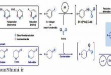 Photo of روش جدید سنتز آنیلین در شیمی آلی