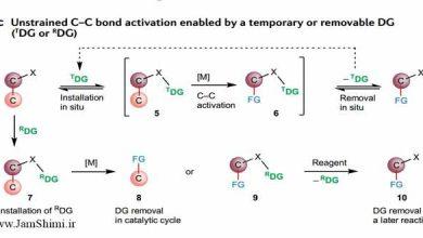 Photo of گروه های هدایت کننده موقت برای فعال سازی پیوند C-C بدون فشار زاویه ای