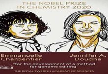 Photo of برندگان جایزه نوبل شیمی 2020: توسعه روش ویرایش ژنوم