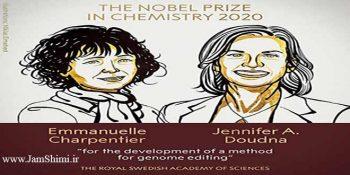 برندگان جایزه نوبل شیمی 2020: توسعه روش ویرایش ژنوم