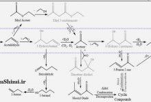 Photo of کاتالیزور تبدیل اتانول به مواد شیمیایی و سوخت با ارزش بالا