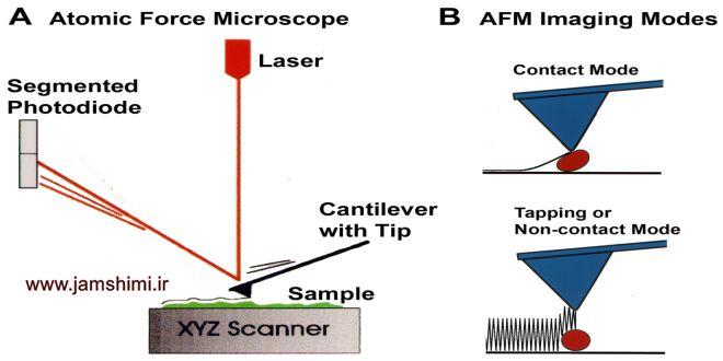 دانلود مقاله درباره میکروسکوپ نیروی اتمی AFM به زبان فارسی