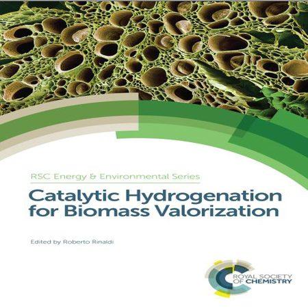 دانلود کتاب هیدروژن کاتالیستی برای سنجش توده زیستی Roberto Rinaldi