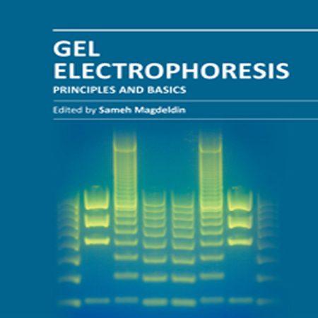 دانلود کتاب اصول و مبانی ژل الکتروفورز Gel Electrophoresis Principles and Basics