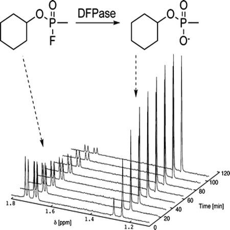 دانلود پاورپوینت NMR دو بعدی 2D NMR به زبان انگلیسی