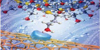 دانلود مقاله نقش نانو حامل ها در سیستم های دارو رسانی