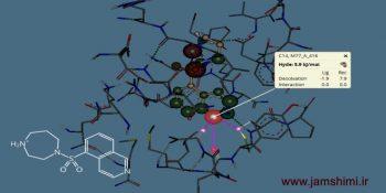 دانلود SeeSAR v7.1 نرم افزار شبیه سازی ترکیبات مولکولی و اتمی