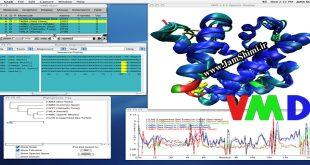 دانلود VMD 1.9.3 Win/Linux نرم افزار شبیه سازی مولکولی