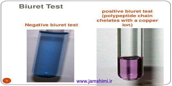 آزمایش بیوره جهت تشخیص وجود پروتئین در نمونه