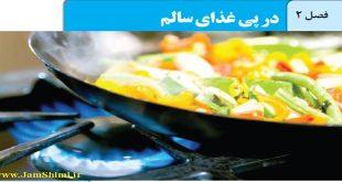 دانلود جزوه شیمی یازدهم فصل 2 دوم در پی غذای سالم