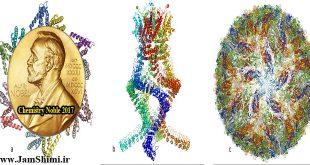دانلود مقاله کامل طرح پژوهشی کریوالکترون میکروسکوپی جایزه نوبل شیمی 2017