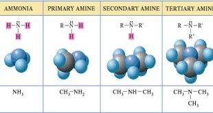 نکات کنکوری انواع آمین در شیمی و مقایسه قدرت بازی آمین ها