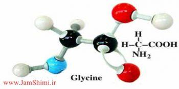 مقایسه خواص گلی سین با پروپانوییک اسید و بوتیل آمین