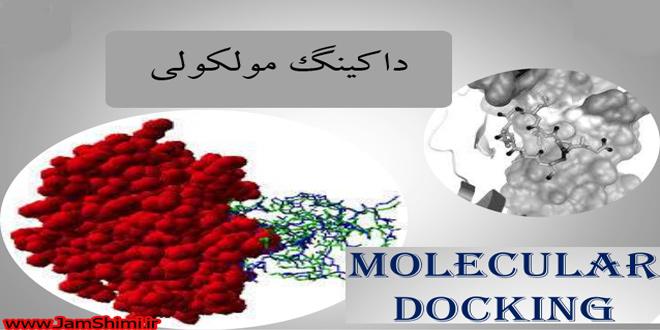 Molecular Docking داکینگ مولکولی چیست و چه کاربردی دارد